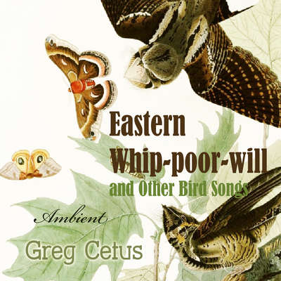 Eastern Whip-poor-will and Other Bird Songs: Nature Sounds for Trance and Meditation Audiobook, by Greg Cetus