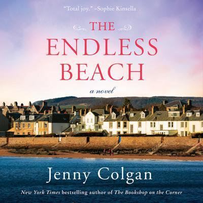 The Endless Beach: A Novel Audiobook, by