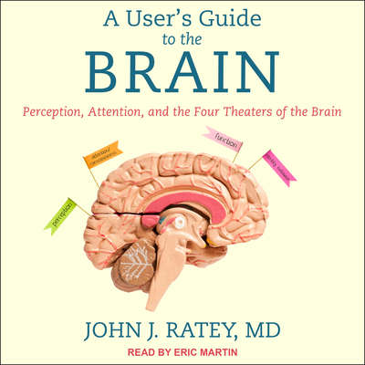 A User's Guide to the Brain: Perception, Attention, and the Four Theaters of the Brain Audiobook, by John J. Ratey