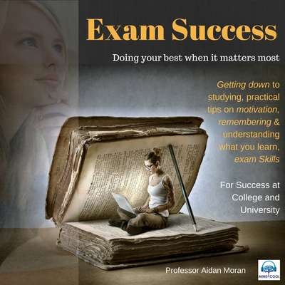 Exam Success: For Success at College and University Audiobook, by Professor Aidan Moran