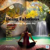 Taking Control of your Day: Be Fabulous Audiobook, by Brenda Shankey