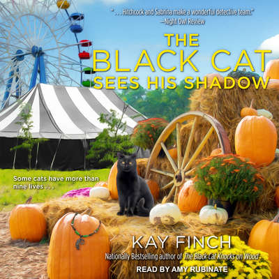 The Black Cat Sees His Shadow Audiobook, by Kay Finch