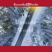 The Unmade World Audiobook, by Steve Yarbrough|