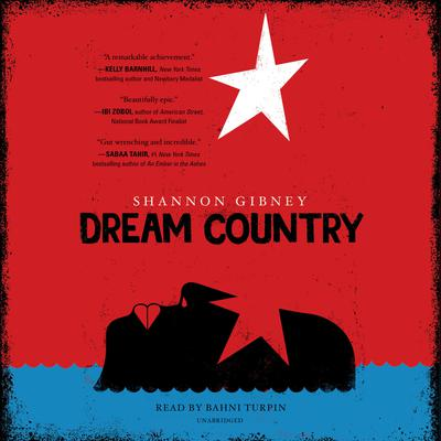 Dream Country Audiobook, by Shannon Gibney