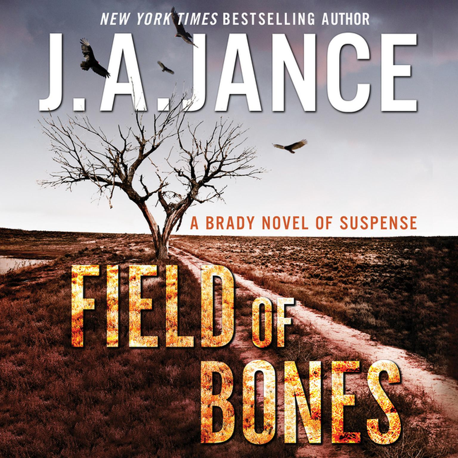 Printable Field of Bones: A Brady Novel of Suspense Audiobook Cover Art