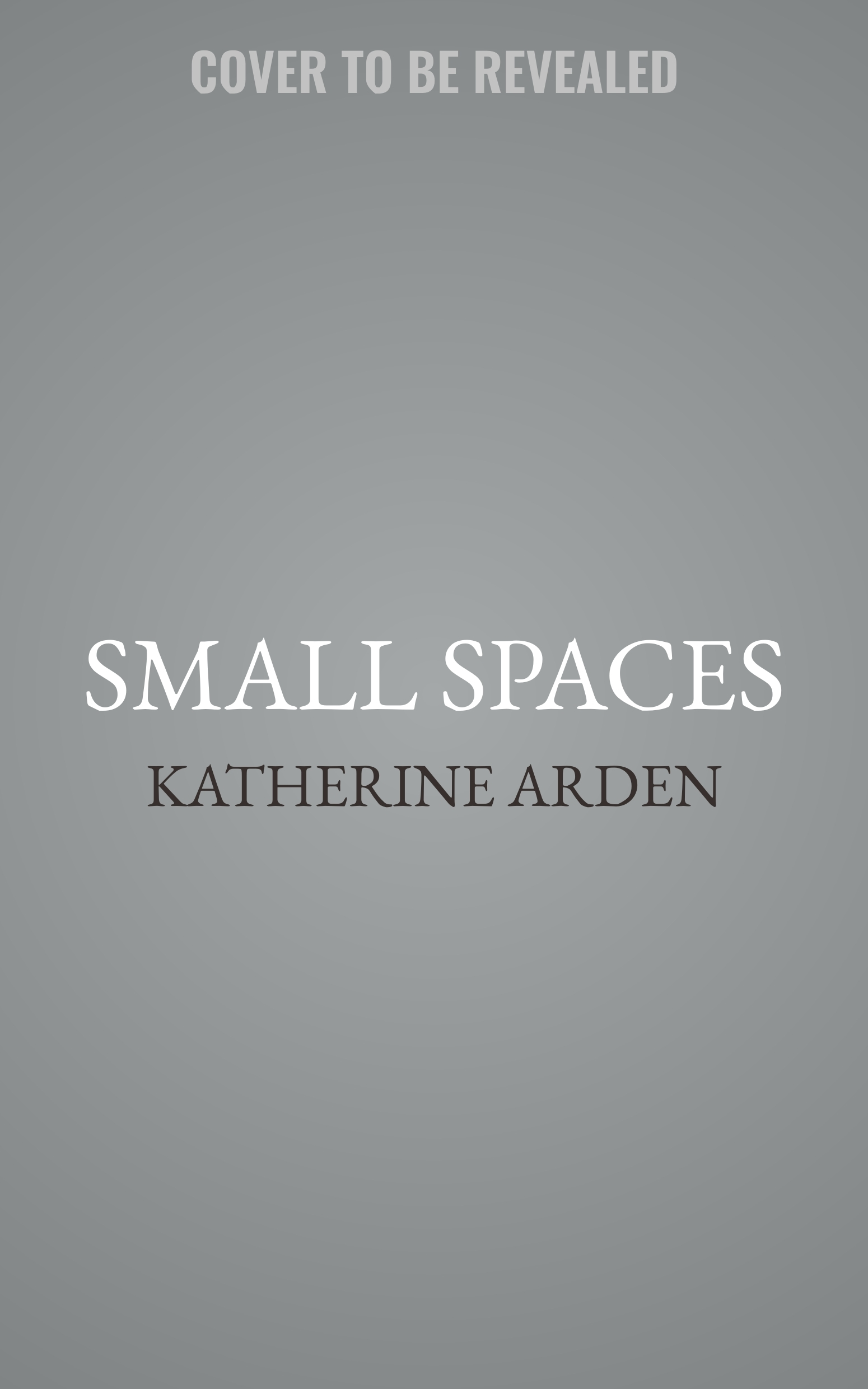 Small Spaces Audiobook