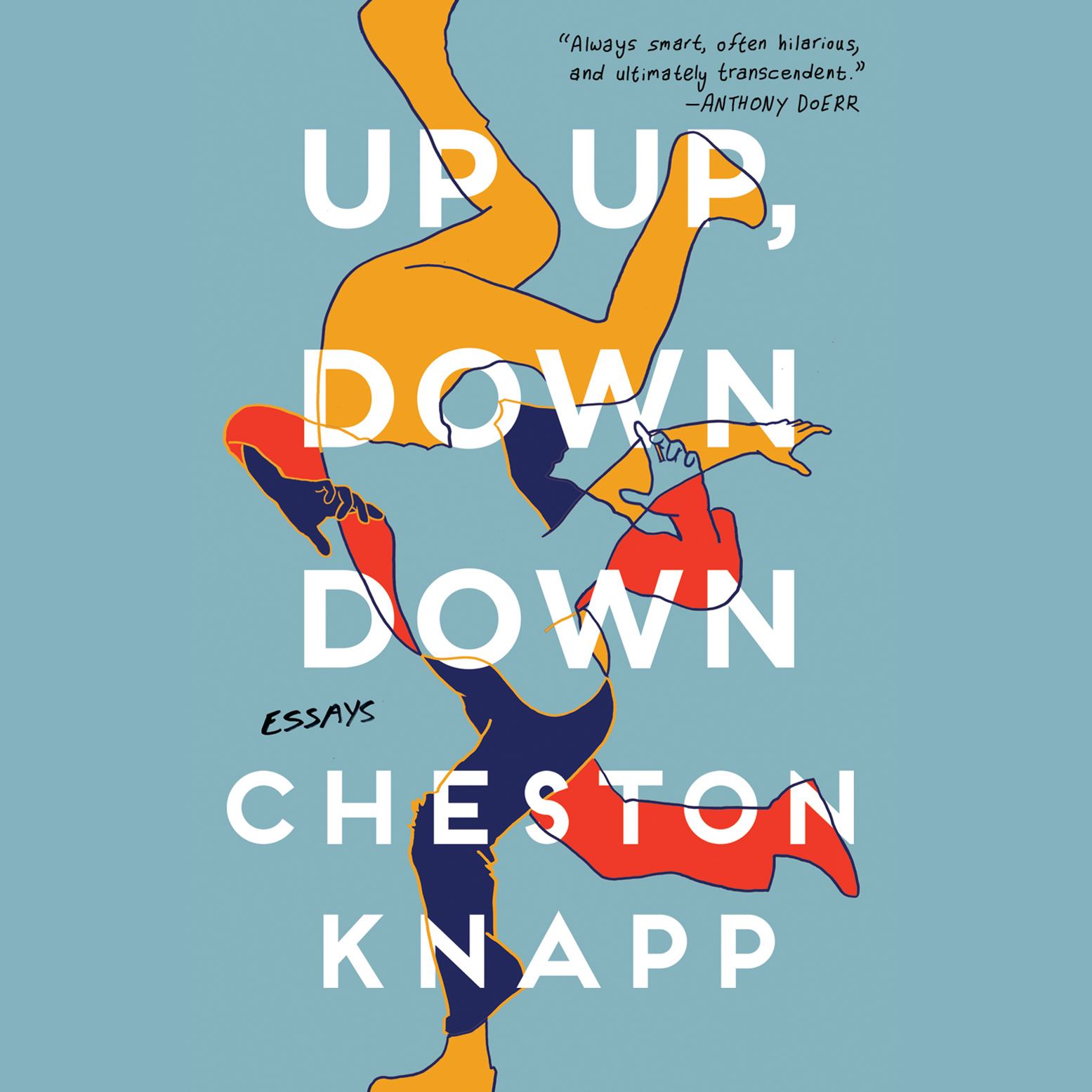 Printable Up Up, Down Down: Essays Audiobook Cover Art