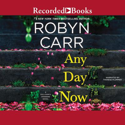 Any Day Now (Abridged) Audiobook, by Robyn Carr