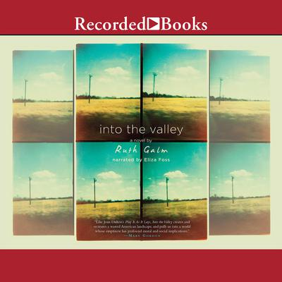 Into the Valley Audiobook, by Ruth Galm