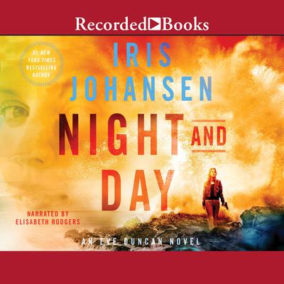 Night and Day Audiobook, by Iris Johansen