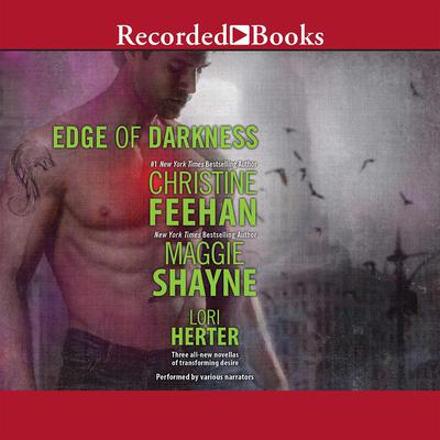 Edge of Darkness Audiobook, by Maggie Shayne