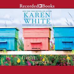Flight Patterns Audiobook, by Karen White