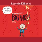 Big Wish Audiobook, by Brandon Robshaw