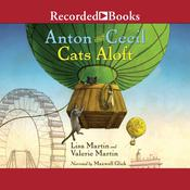 Cats Aloft Audiobook, by Valerie Martin