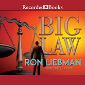 Big Law Audiobook, by Ron Liebman