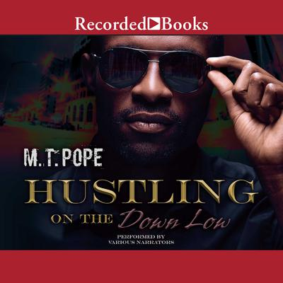 Hustling on the Down Low Audiobook, by M. T. Pope