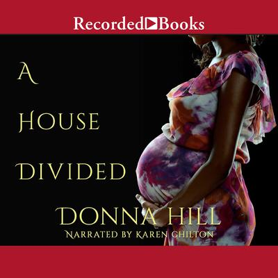 A House Divided Audiobook, by Donna Hill