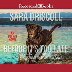 Before Its Too Late: Why Some Kids Get Into Trouble--and What Parents Can Do About It Audiobook, by Sara Driscoll