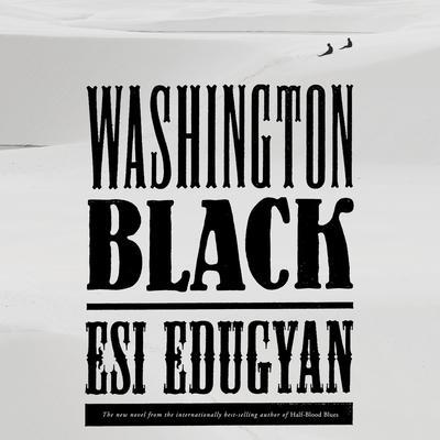 Washington Black: A novel Audiobook, by Esi Edugyan