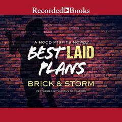 Best Laid Plans Audiobook, by Brick, Storm , Storm