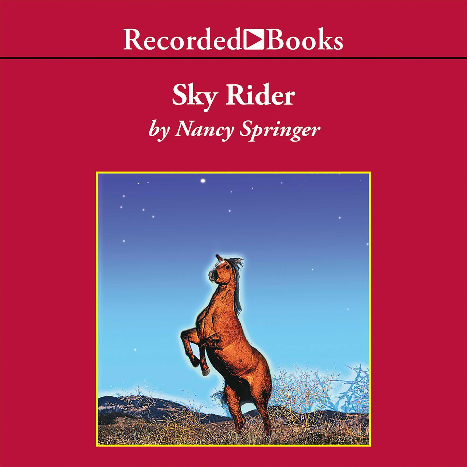 Printable Sky Rider Audiobook Cover Art
