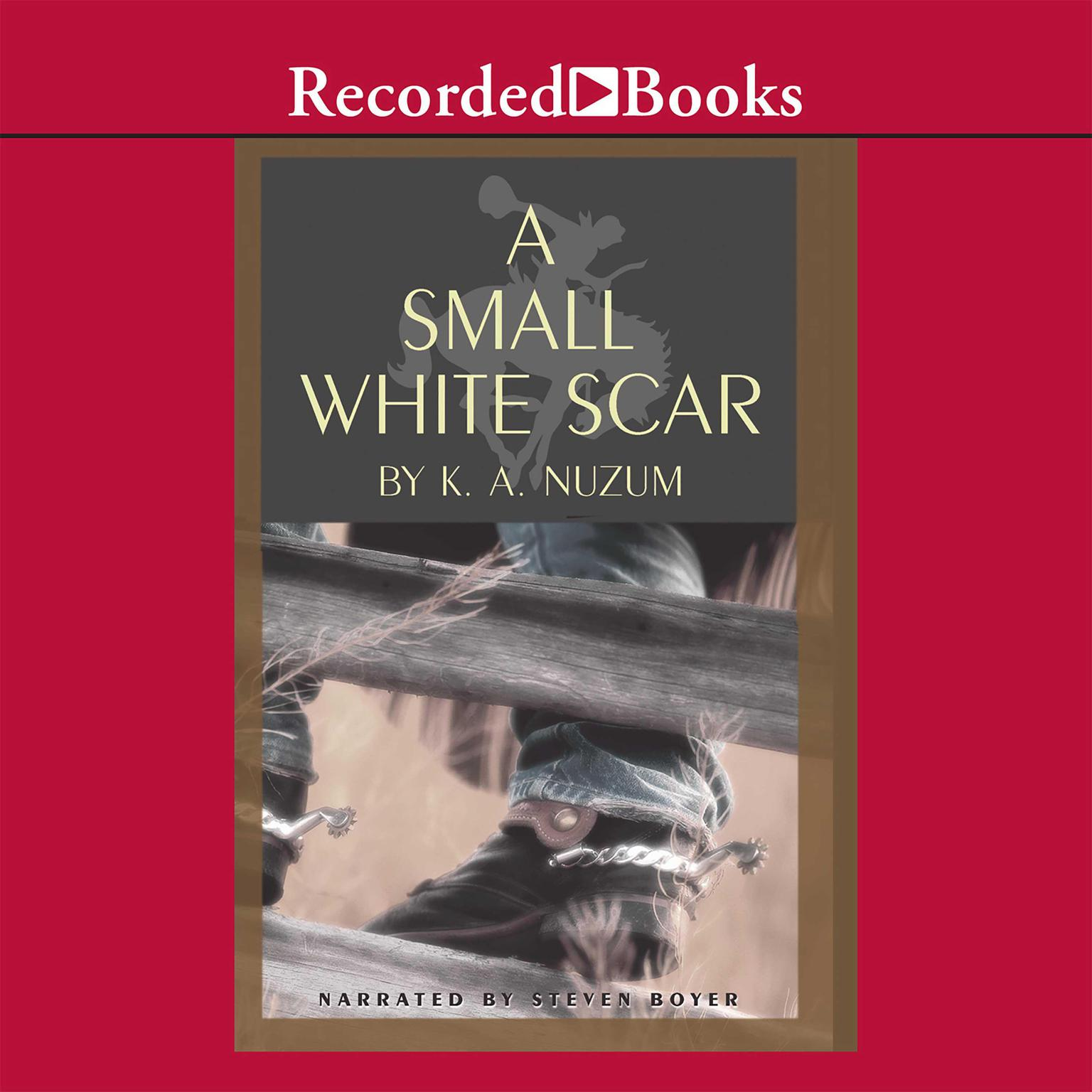 Printable A Small White Scar Audiobook Cover Art