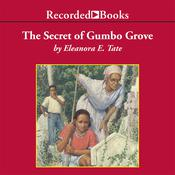 The Secret of Gumbo Grove Audiobook, by Eleanora Tate