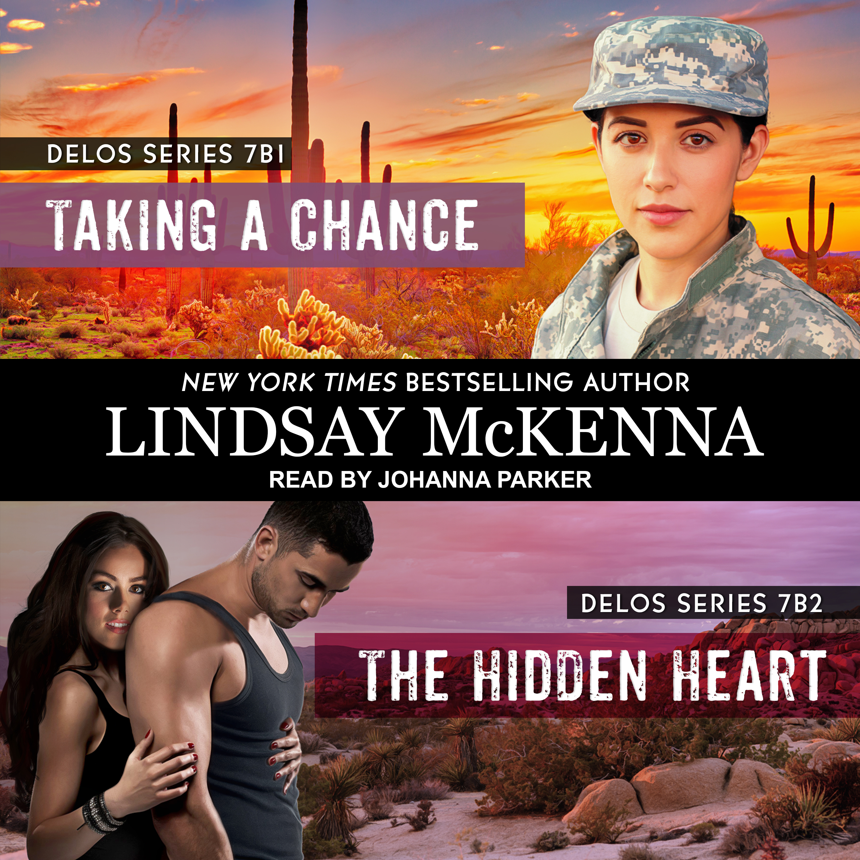 Printable Taking a Chance/The Hidden Heart Audiobook Cover Art