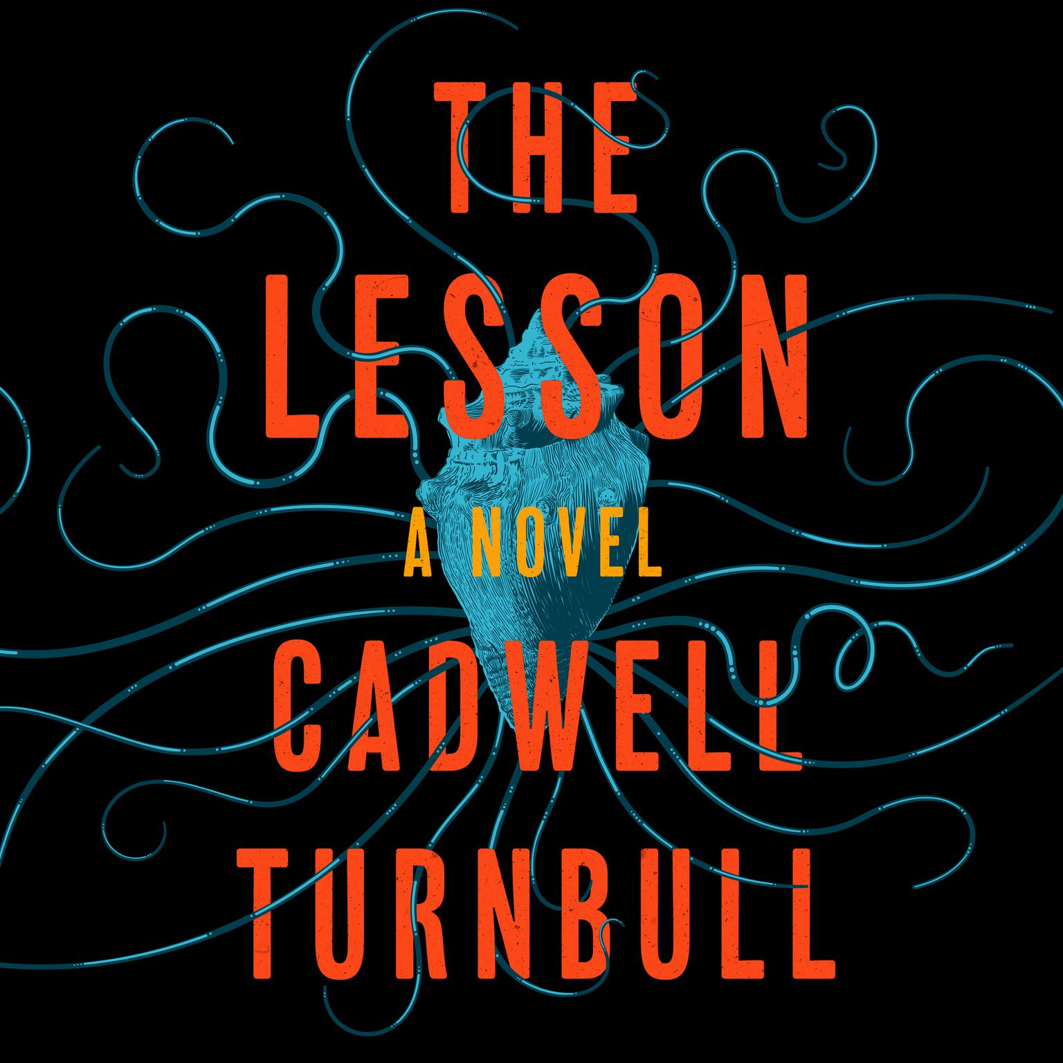 Printable The Lesson: A Novel Audiobook Cover Art