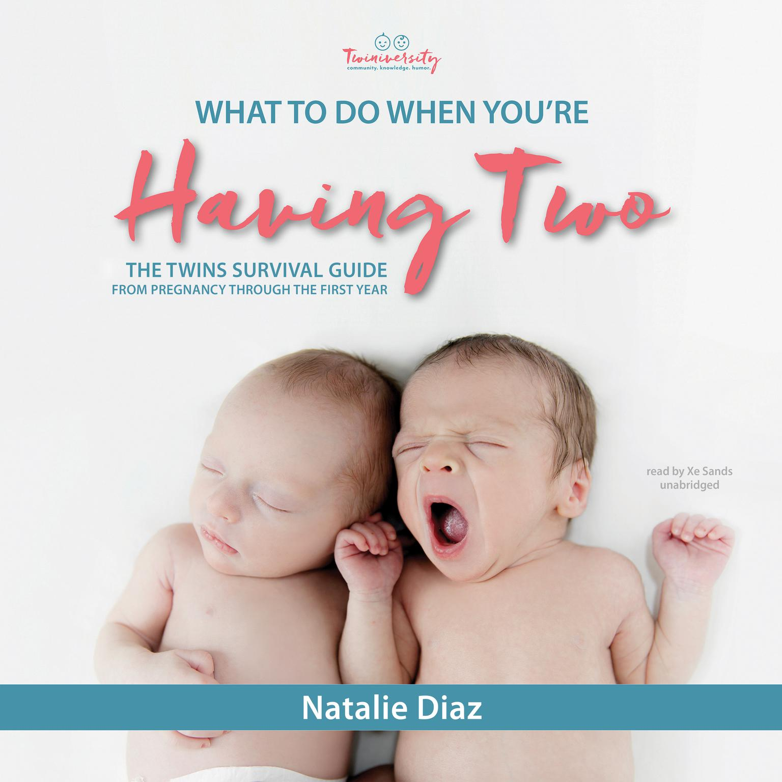 Printable What to Do When You're Having Two: The Twins Survival Guide from Pregnancy through the First Year Audiobook Cover Art