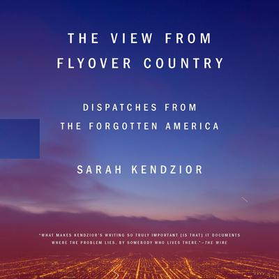 The View from Flyover Country: Dispatches from the Forgotten America Audiobook, by Sarah Kendzior