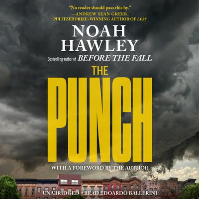 The Punch Audiobook, by Noah Hawley