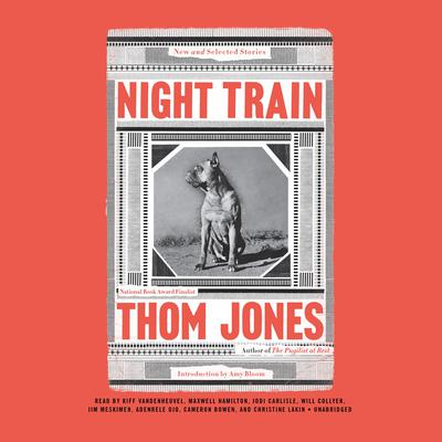 Night Train: New and Selected Stories Audiobook, by Thom Jones