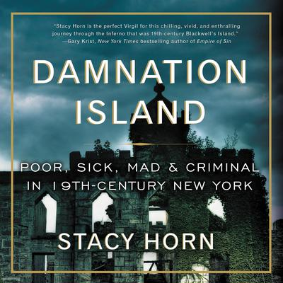 Damnation Island: Poor, Sick, Mad, and Criminal in 19th-Century New York Audiobook, by Stacy Horn