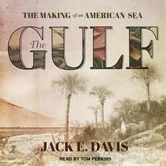 The Gulf: The Making of An American Sea Audiobook, by Jack E. Davis