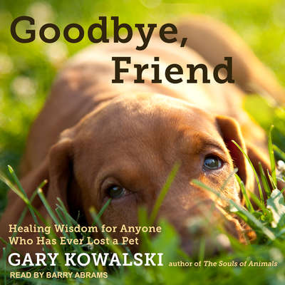 Goodbye, Friend: Healing Wisdom for Anyone Who Has Ever Lost a Pet Audiobook, by Gary Kowalski