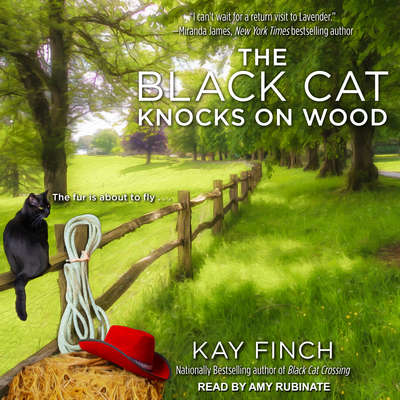 The Black Cat Knocks on Wood Audiobook, by Kay Finch