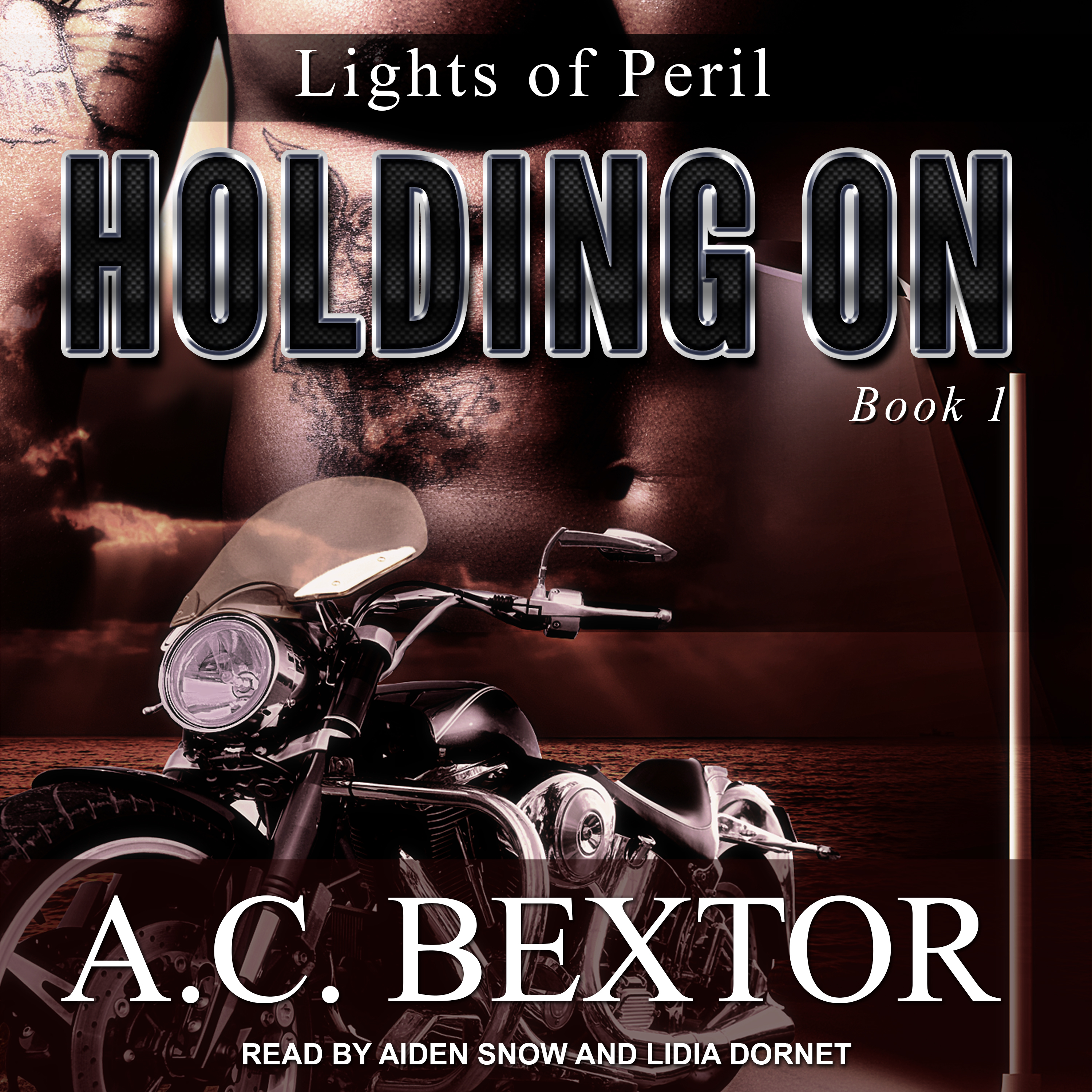 Printable Holding On Audiobook Cover Art