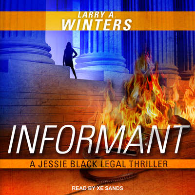 Informant Audiobook, by Larry A. Winters