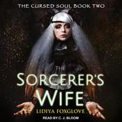 The Sorcerers Wife Audiobook, by Jaclyn Dolamore