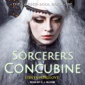 The Sorcerers Concubine Audiobook, by Jaclyn Dolamore