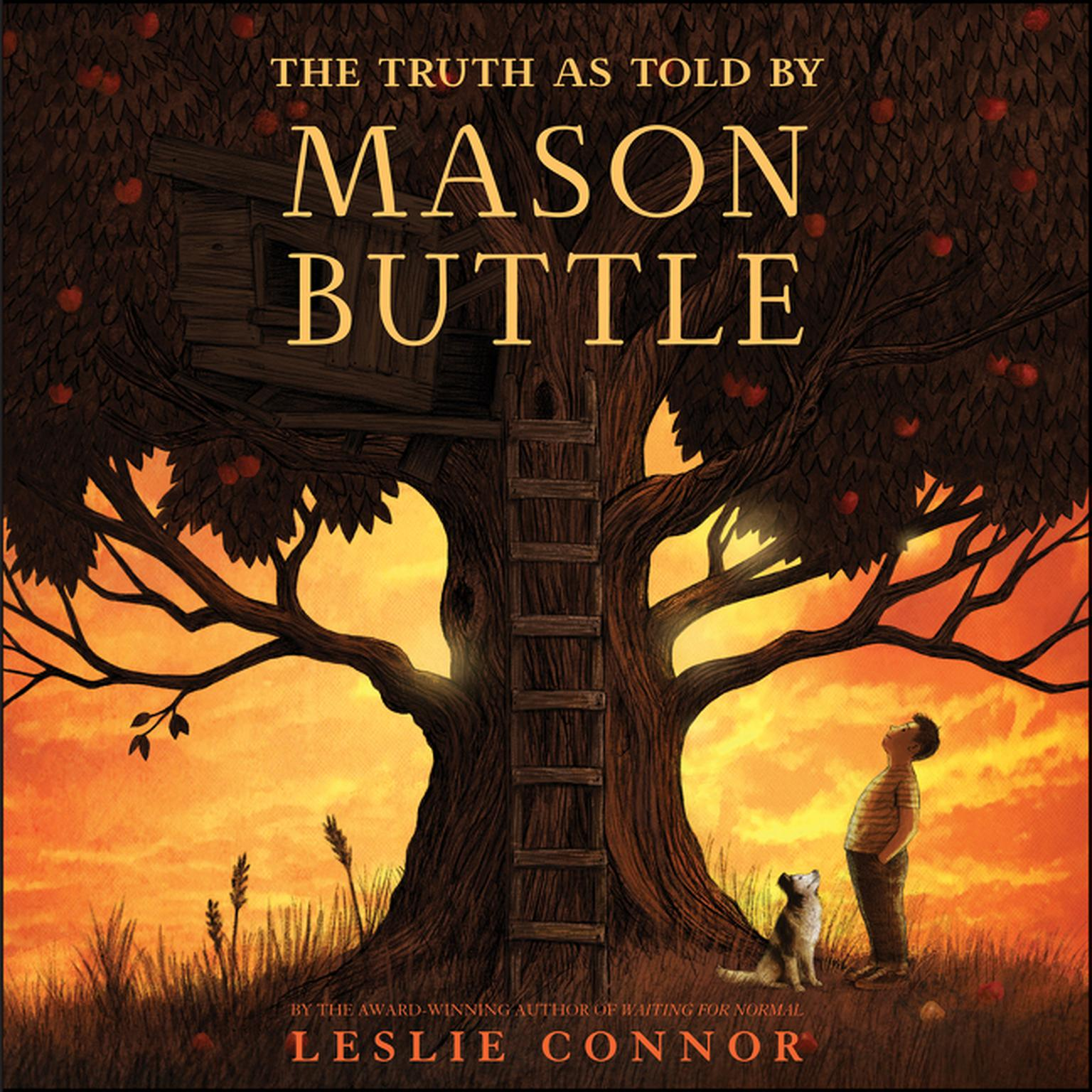 Printable The Truth as Told by Mason Buttle Audiobook Cover Art