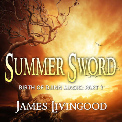 Summer Sword Audiobook, by James Livingood