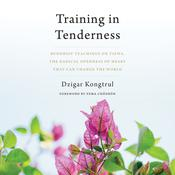 Training in Tenderness: Buddhist Teachings on Tsewa, the Radical Openness of Heart That Can Change the  World Audiobook, by Dzigar Kongtrül|