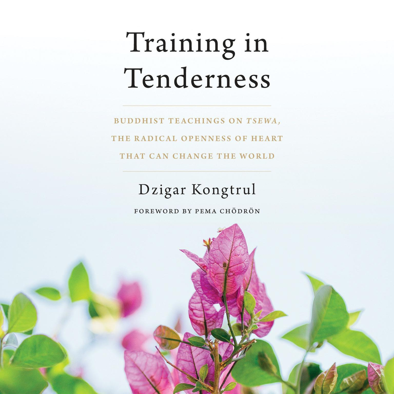 Printable Training in Tenderness: Buddhist Teachings on Tsewa, the Radical Openness of Heart That Can Change the  World Audiobook Cover Art