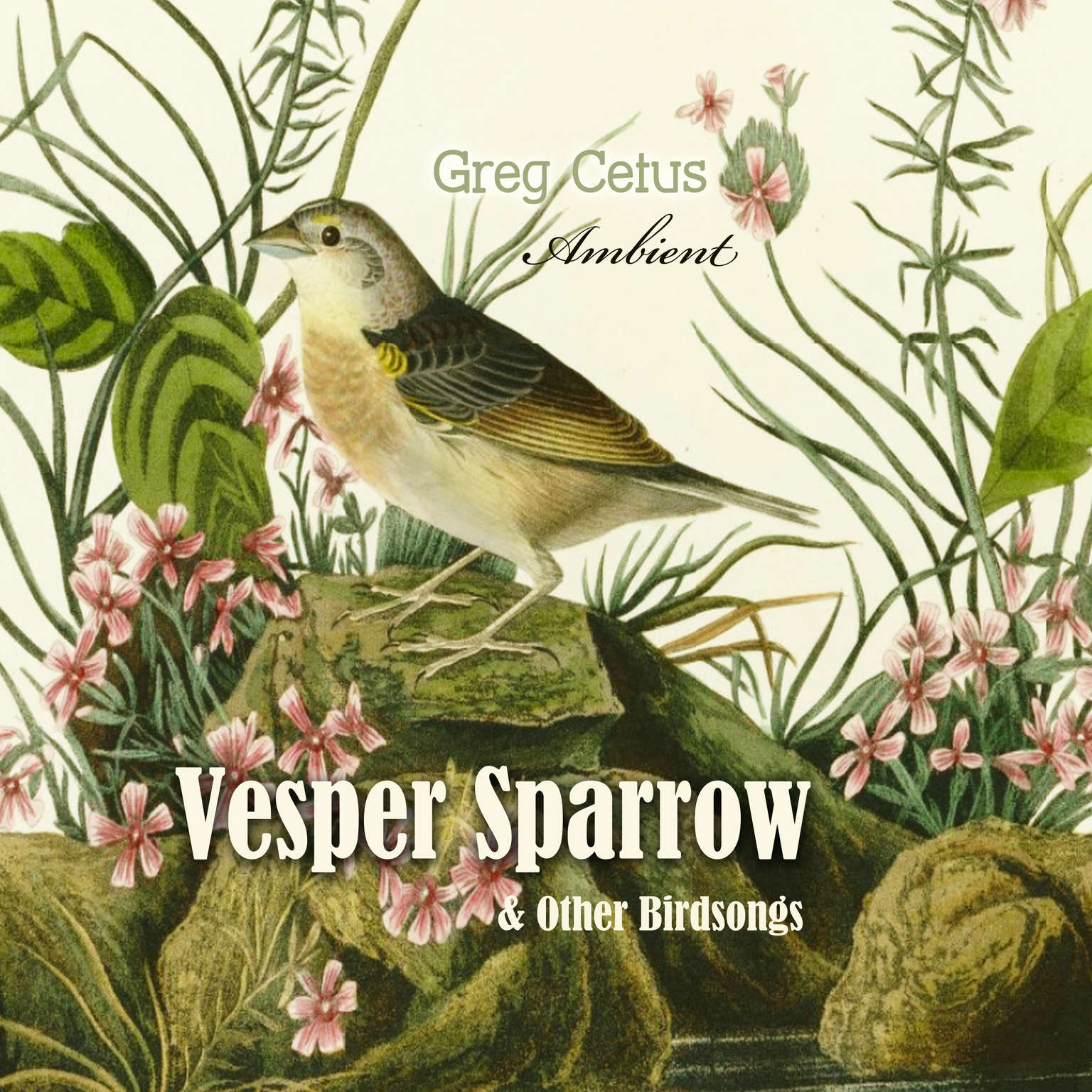 Vesper Sparrow and Other Bird Songs Audiobook, by Greg Cetus