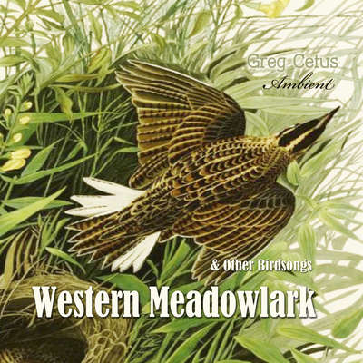 Western Meadowlark and Other Bird Songs Audiobook, by Greg Cetus