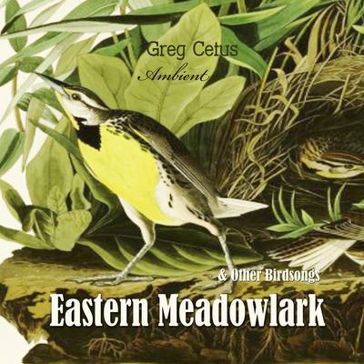 Eastern Meadowlark and Other Bird Songs Audiobook, by Greg Cetus