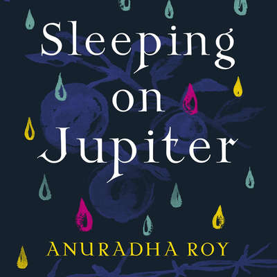 Sleeping on Jupiter: A Novel Audiobook, by Anuradha Roy