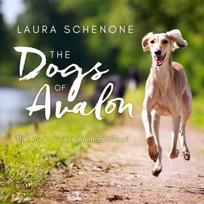 The Dogs of Avalon: The Race to Save Animals in Peril Audiobook, by Laura Schenone